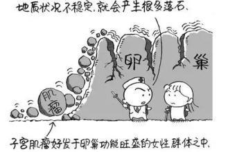 良性子宫肌瘤有哪些情况要手术?上海市妇科医院